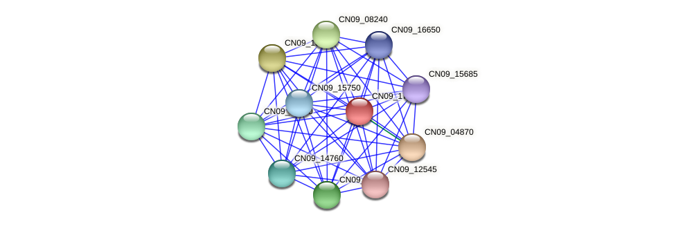 CN09_17880 protein (Agrobacterium rhizogenes) - STRING interaction network