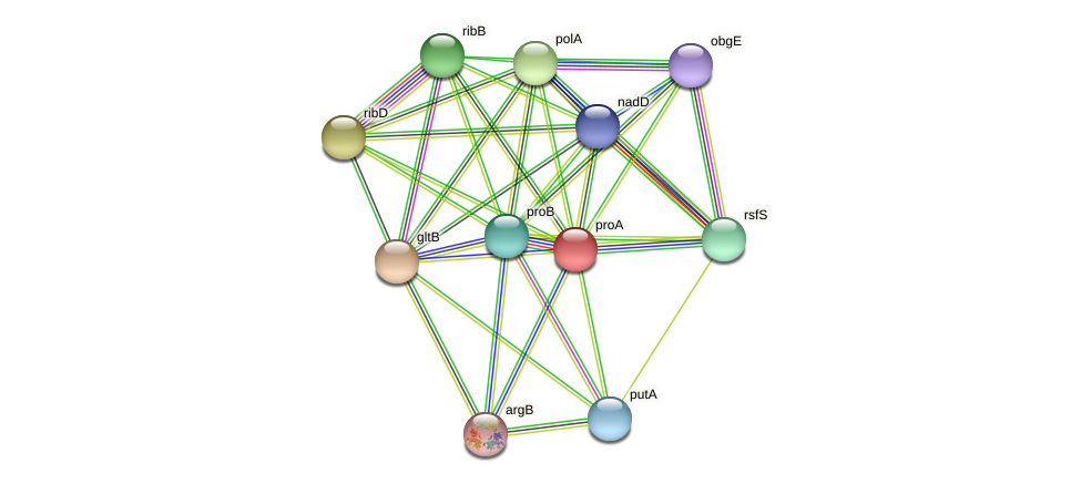 proA protein (Agrobacterium rhizogenes) - STRING interaction network