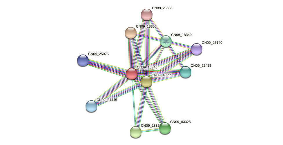 CN09_18345 protein (Agrobacterium rhizogenes) - STRING interaction network
