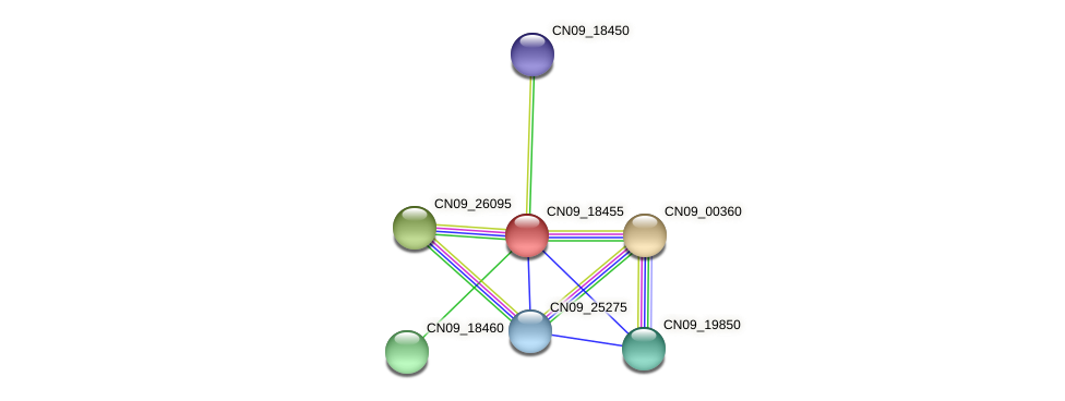 CN09_18455 protein (Agrobacterium rhizogenes) - STRING interaction network