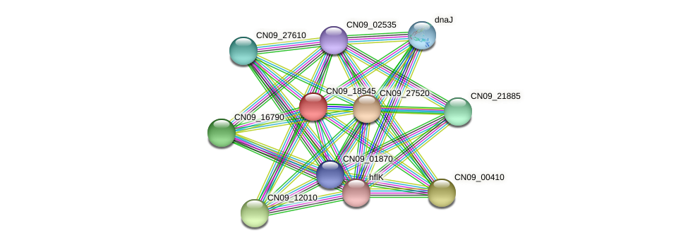 CN09_18545 protein (Agrobacterium rhizogenes) - STRING interaction network