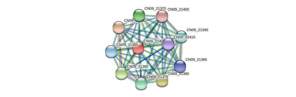 CN09_21400 protein (Agrobacterium rhizogenes) - STRING interaction network