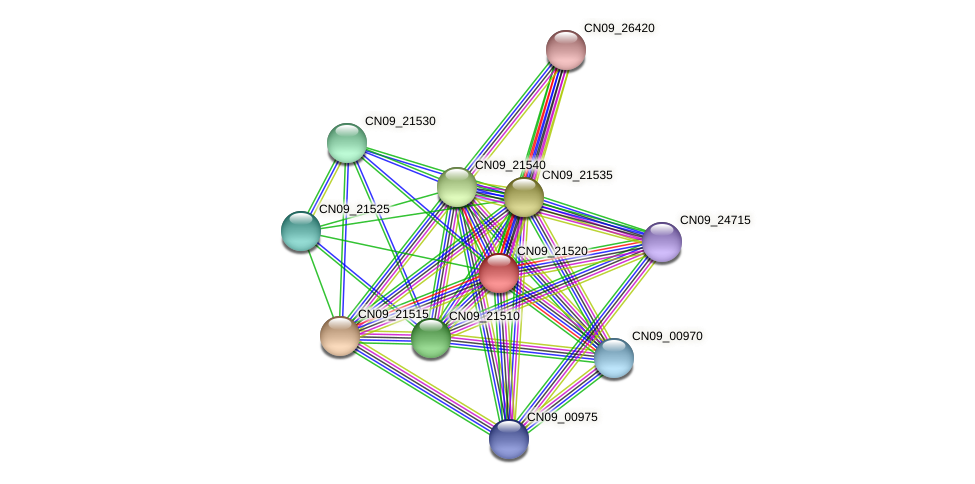 CN09_21520 protein (Agrobacterium rhizogenes) - STRING interaction network