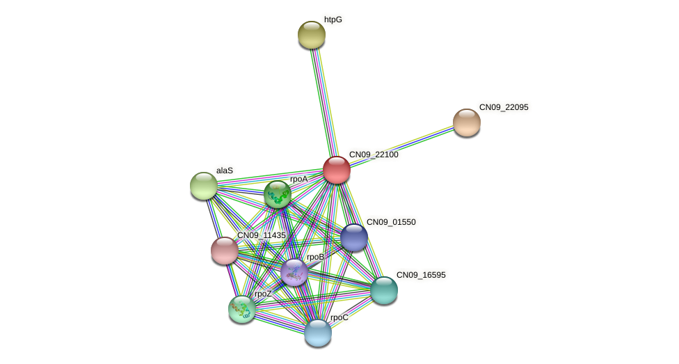 CN09_22100 protein (Agrobacterium rhizogenes) - STRING interaction network