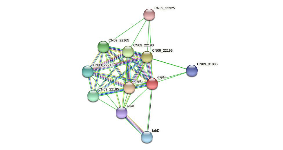 CN09_22170 protein (Agrobacterium rhizogenes) - STRING interaction network