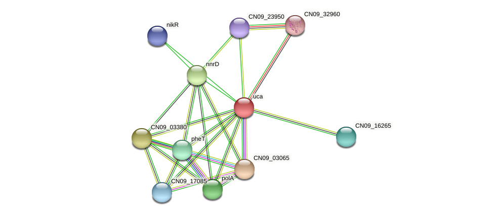 CN09_22360 protein (Agrobacterium rhizogenes) - STRING interaction network
