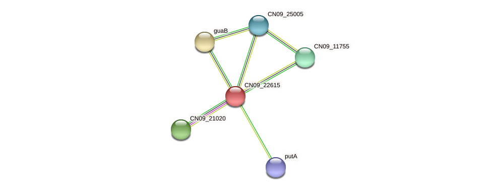 CN09_22615 protein (Agrobacterium rhizogenes) - STRING interaction network