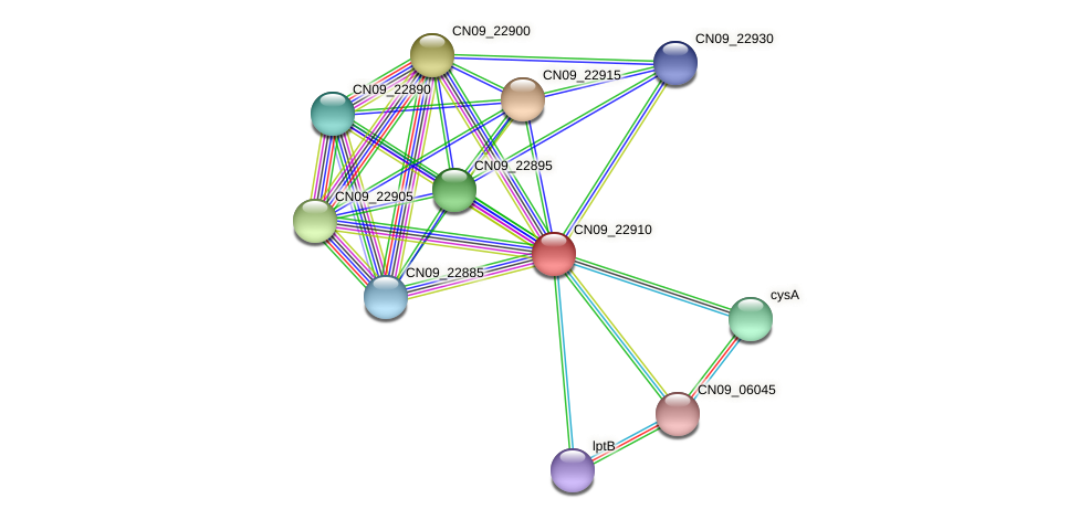 CN09_22910 protein (Agrobacterium rhizogenes) - STRING interaction network
