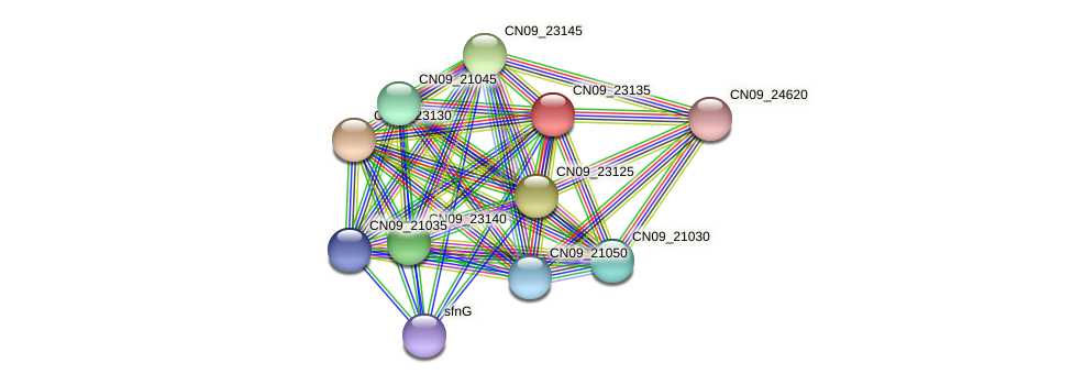 CN09_23135 protein (Agrobacterium rhizogenes) - STRING interaction network