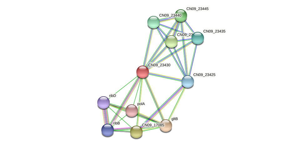CN09_23430 protein (Agrobacterium rhizogenes) - STRING interaction network