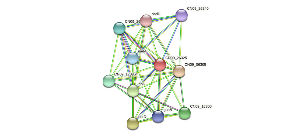 CN09_26325 protein (Agrobacterium rhizogenes) - STRING interaction network