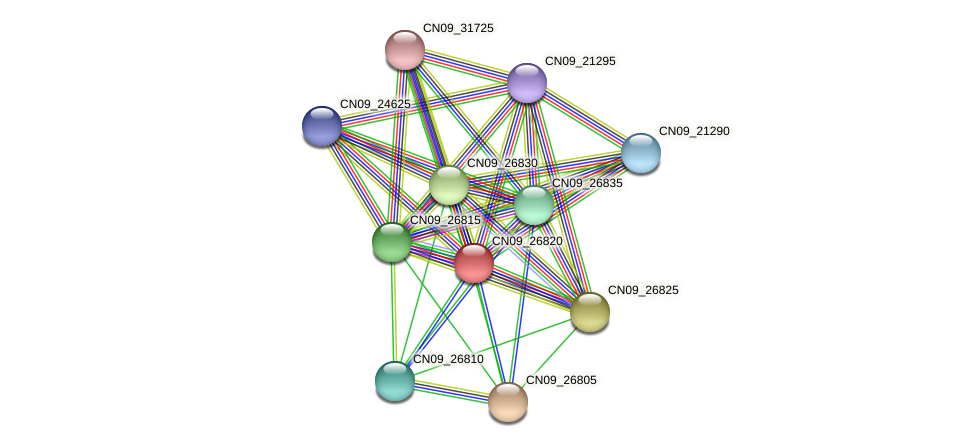 CN09_26820 protein (Agrobacterium rhizogenes) - STRING interaction network