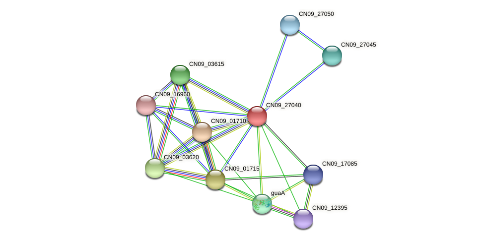 CN09_27040 protein (Agrobacterium rhizogenes) - STRING interaction network