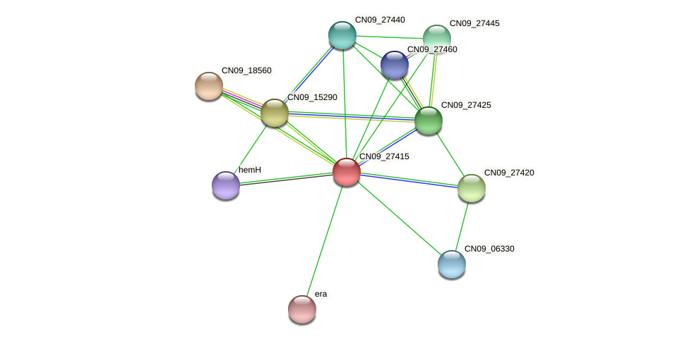 CN09_27415 protein (Agrobacterium rhizogenes) - STRING interaction network