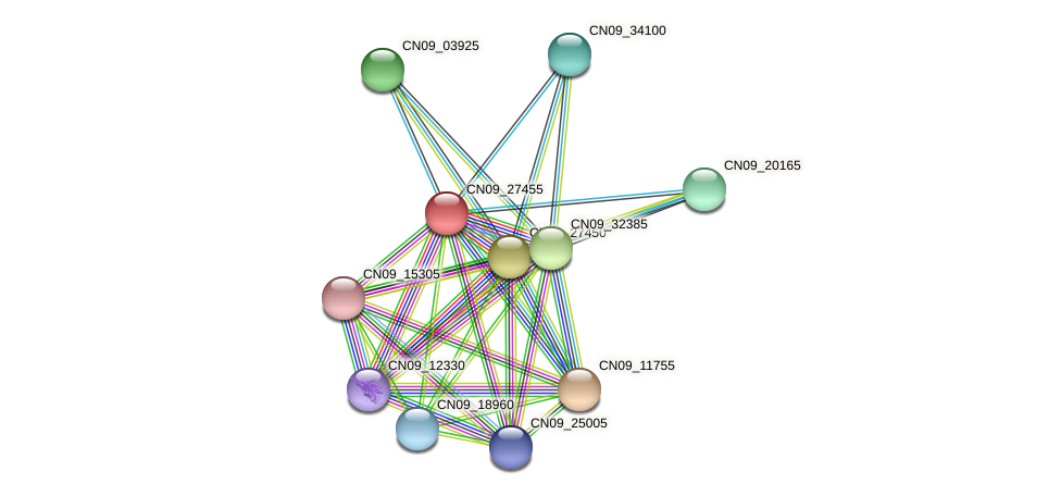 CN09_27455 protein (Agrobacterium rhizogenes) - STRING interaction network