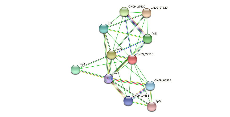 CN09_27515 protein (Agrobacterium rhizogenes) - STRING interaction network