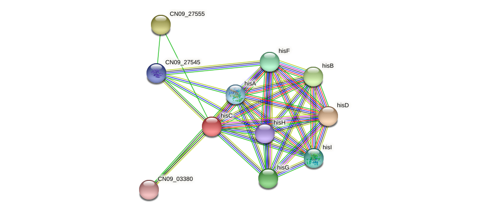 hisC protein (Agrobacterium rhizogenes) - STRING interaction network