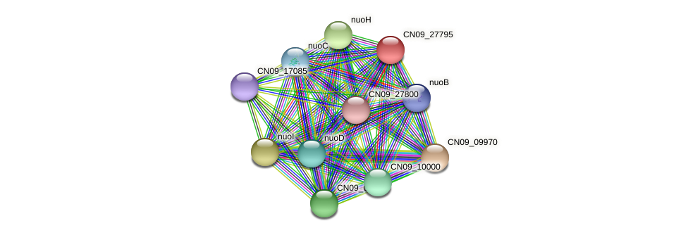 CN09_27795 protein (Agrobacterium rhizogenes) - STRING interaction network