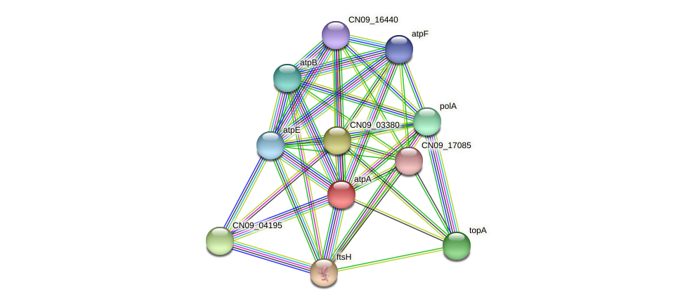 atpA protein (Agrobacterium rhizogenes) - STRING interaction network