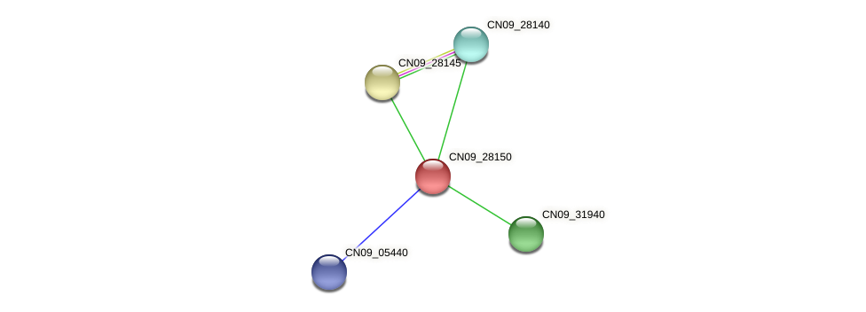 CN09_28150 protein (Agrobacterium rhizogenes) - STRING interaction network