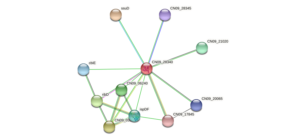CN09_28340 protein (Agrobacterium rhizogenes) - STRING interaction network