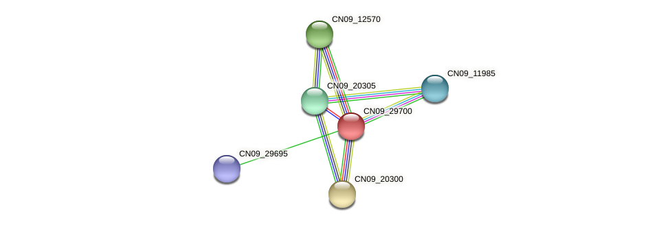 CN09_29700 protein (Agrobacterium rhizogenes) - STRING interaction network