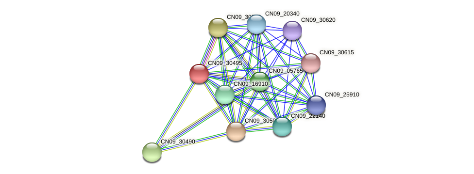 CN09_30495 protein (Agrobacterium rhizogenes) - STRING interaction network