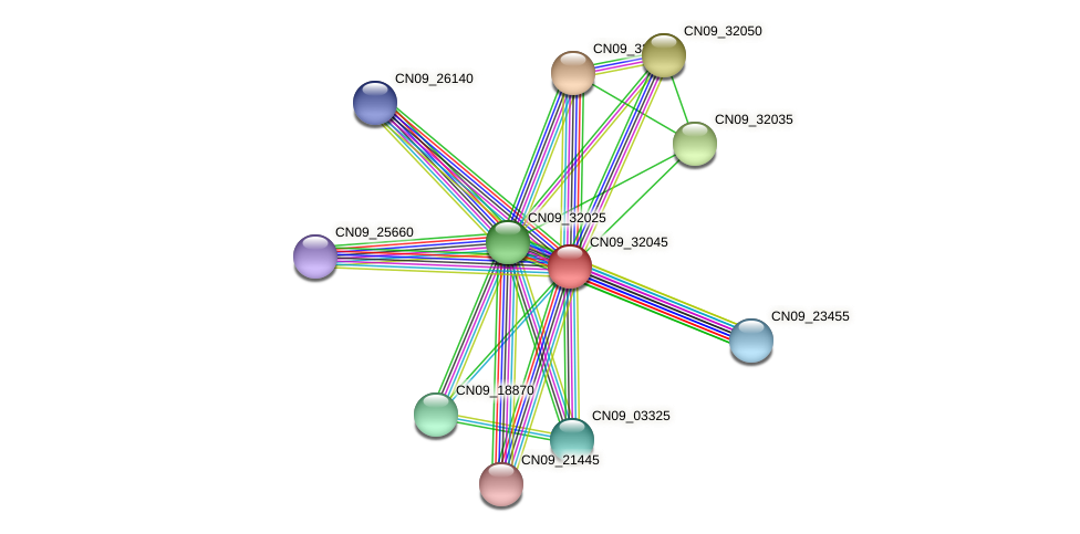 CN09_32045 protein (Agrobacterium rhizogenes) - STRING interaction network