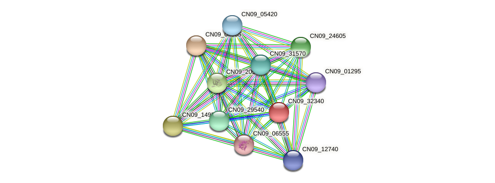 CN09_32340 protein (Agrobacterium rhizogenes) - STRING interaction network