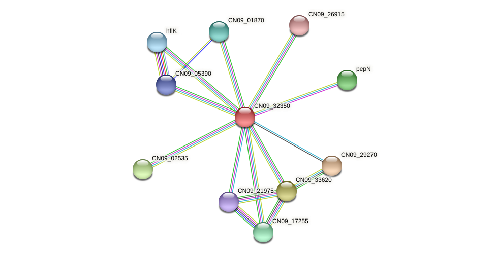 CN09_32350 protein (Agrobacterium rhizogenes) - STRING interaction network