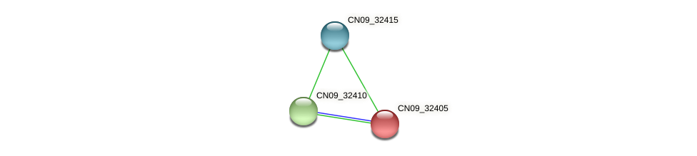 CN09_32405 protein (Agrobacterium rhizogenes) - STRING interaction network