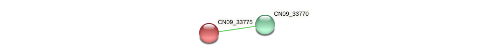 CN09_33775 protein (Agrobacterium rhizogenes) - STRING interaction network