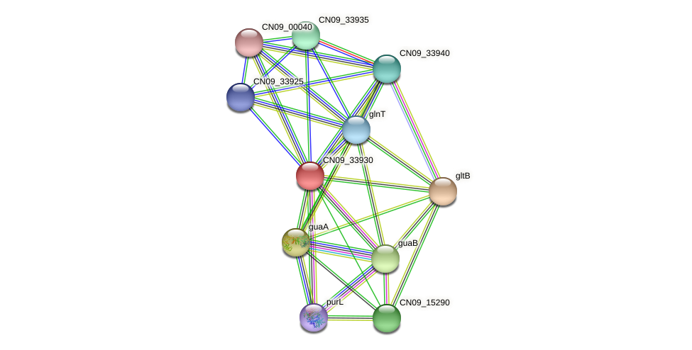 CN09_33930 protein (Agrobacterium rhizogenes) - STRING interaction network