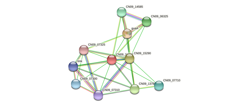 CN09_34090 protein (Agrobacterium rhizogenes) - STRING interaction network