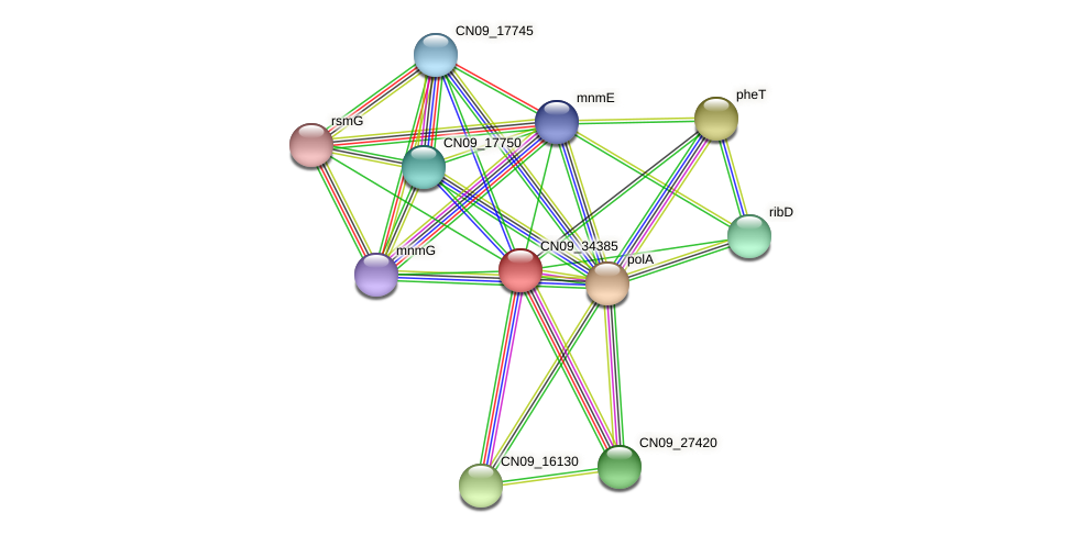 CN09_34385 protein (Agrobacterium rhizogenes) - STRING interaction network