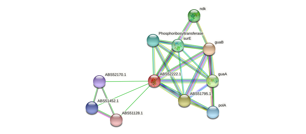 ABS52222.1 protein (Campylobacter hominis) - STRING interaction network
