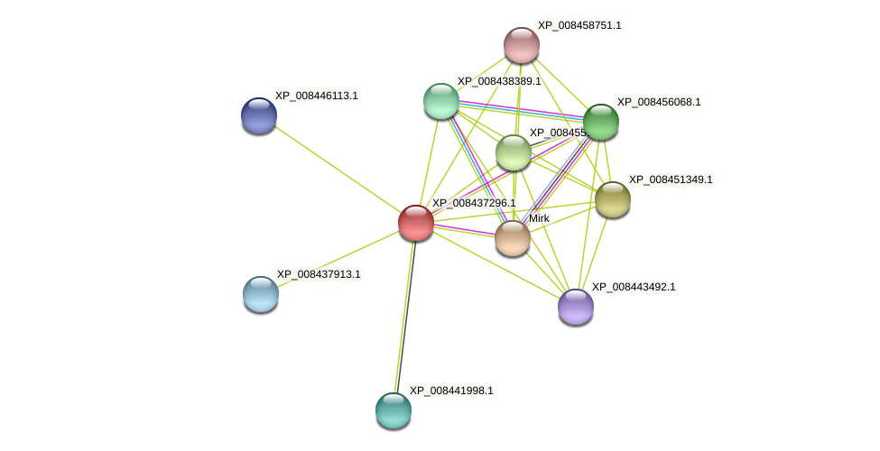 XP_008437296.1 protein (Cucumis melo) - STRING interaction network
