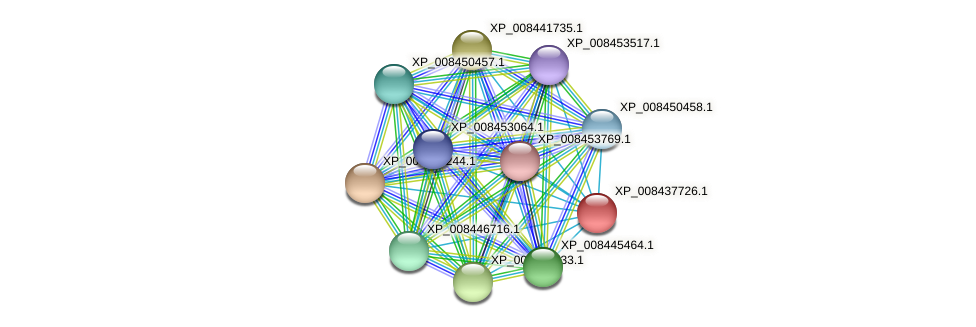 XP_008437726.1 protein (Cucumis melo) - STRING interaction network