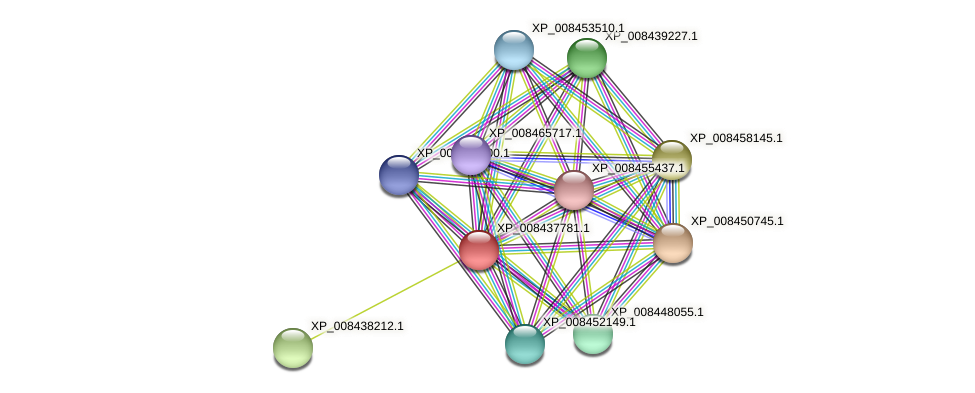 XP_008437781.1 protein (Cucumis melo) - STRING interaction network