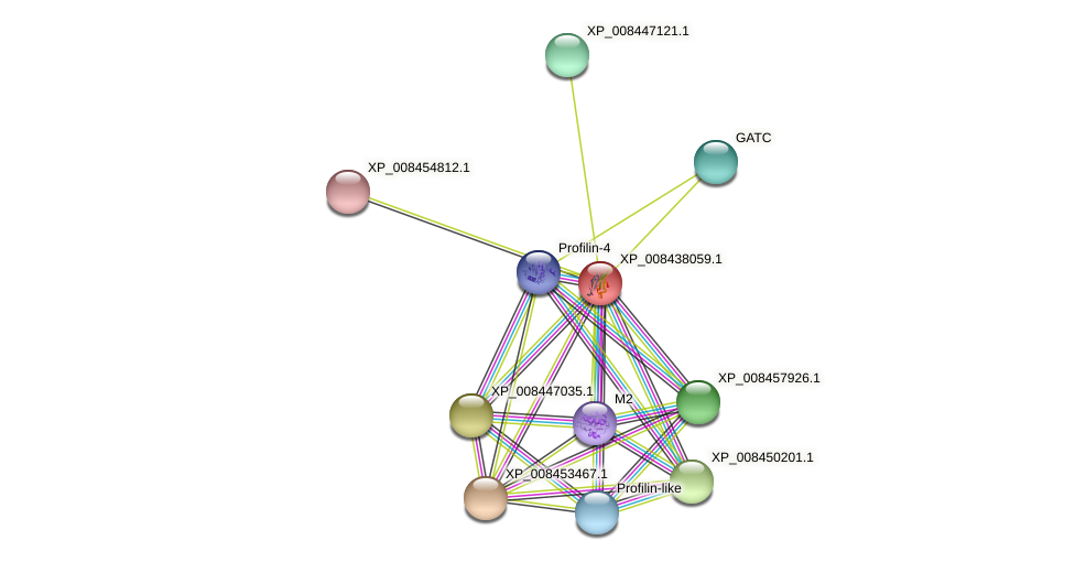 XP_008438059.1 protein (Cucumis melo) - STRING interaction network