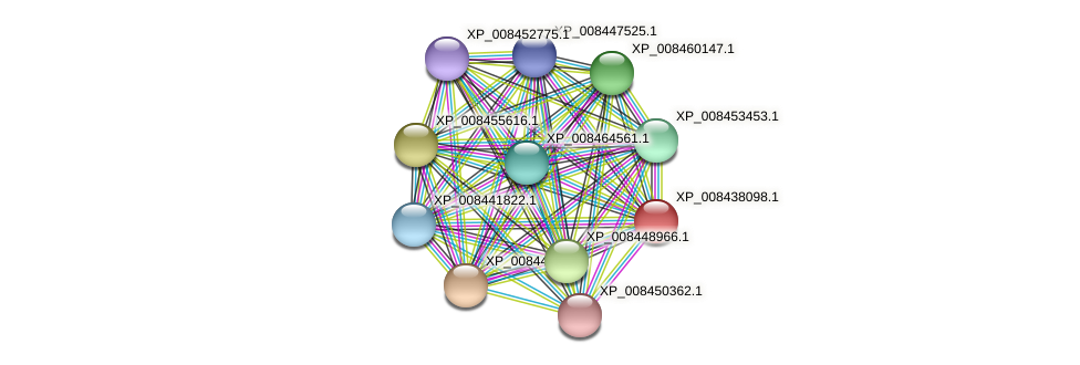 XP_008438098.1 protein (Cucumis melo) - STRING interaction network
