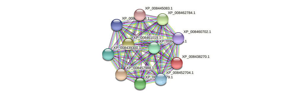 XP_008438270.1 protein (Cucumis melo) - STRING interaction network