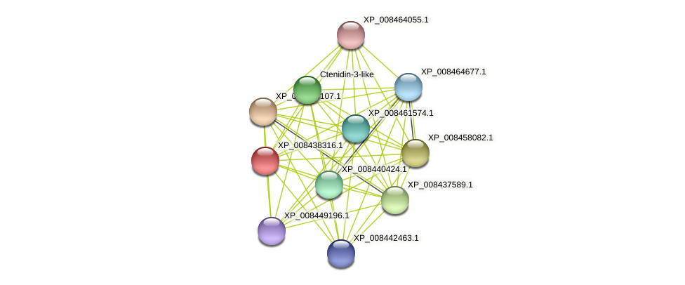 XP_008438316.1 protein (Cucumis melo) - STRING interaction network