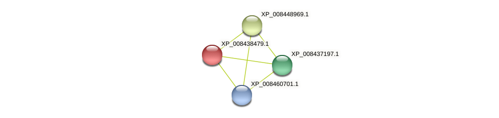 XP_008438479.1 protein (Cucumis melo) - STRING interaction network