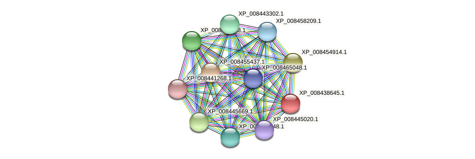 XP_008438645.1 protein (Cucumis melo) - STRING interaction network