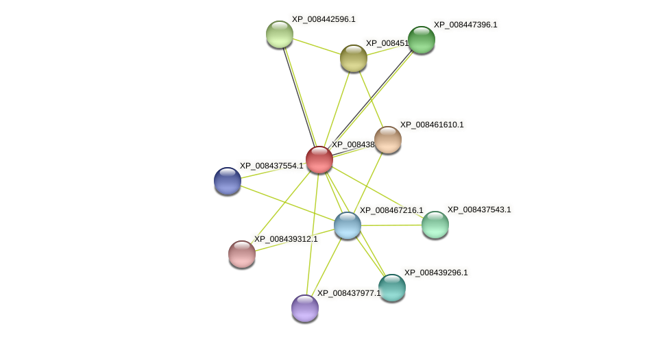 XP_008438695.1 protein (Cucumis melo) - STRING interaction network