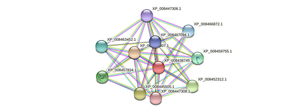 XP_008438745.1 protein (Cucumis melo) - STRING interaction network