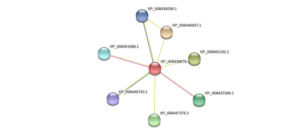 XP_008438876.1 protein (Cucumis melo) - STRING interaction network