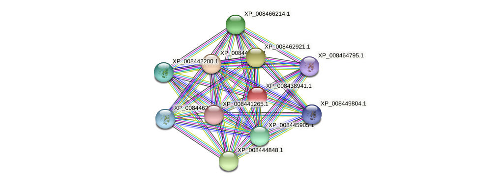 XP_008438941.1 protein (Cucumis melo) - STRING interaction network