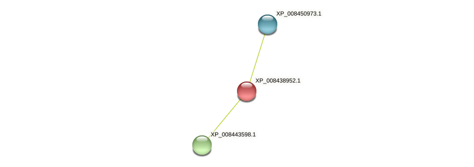 XP_008438952.1 protein (Cucumis melo) - STRING interaction network